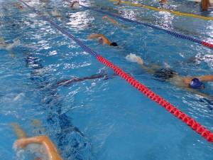 今日もあたりまえのように泳ぎ込みました(^_^)