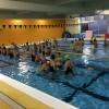 〔満員御礼〕G.W.泳ぎ込み企画!『1000m×9本』【4/29(祝)開催】※会場・本数が変更になりました