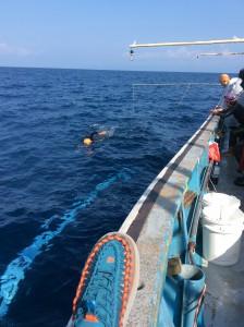 昨年の佐渡海峡横断泳で船の上で愛用した「UNEEK」