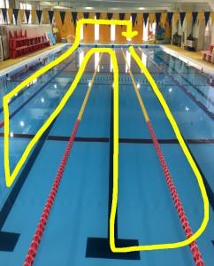 黄色の線のように泳いだり、プールサイドにあがったりを3人で横並びで進めます