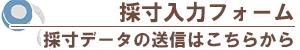【採寸入力フォーム】
