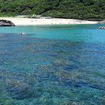 世界自然遺産「屋久島ゆるゆるスイムピクニック」【10月4~6日開催】