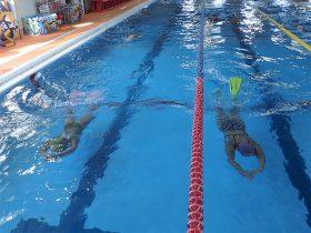 フィンで 200m×5本泳ぎました。