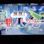 代々木マラソンスイミングの様子が、テレビで放送されました!