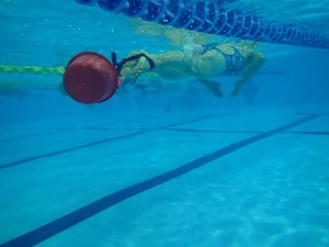頑張って泳いでいます。