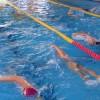 『海を泳ぐための4泳法』 代々木インドア50
