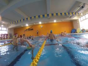 今朝も皆さん気持ち良さそうに泳いでいましたね。