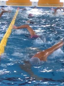 新代田の朝スイムはガンガン泳ぎますよ!