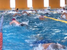 今朝も皆さんガシガシ泳いでましたね!