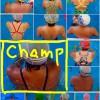 日焼けチャンピオンシップ2016