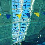 保護中: 「ベーシック合宿2017」開催