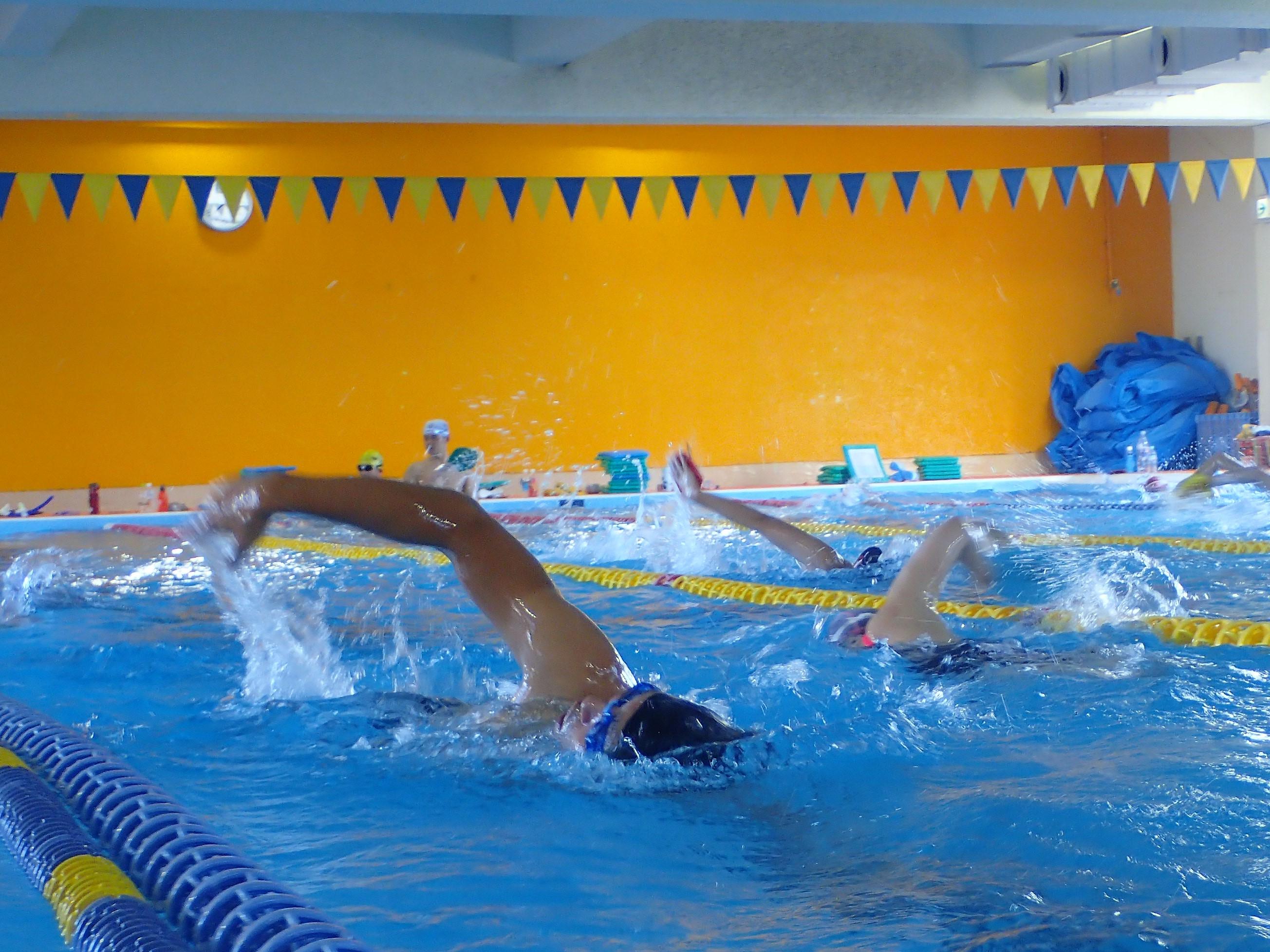 ワンランク上の泳ぎを定着させるには「意識」が重要! | オーシャン ...