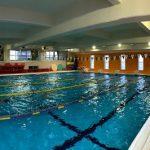 泳パフォーマンス向上の鍵は、、、?