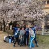 マスターズ大会報告: 日本マスターズ水泳短水路大会@深谷グリーンパーク・パティオ