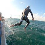 アシカ島〜城ヶ島21kmを泳いできました!