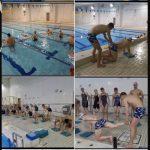 報告ブログ ~第2弾  瀬端コーチの身体の使い方Swim~